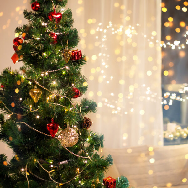 Read article: Take precautions when decorating for Christmas